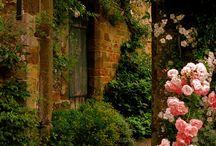 Uzakbahçe / Bahçeler ve kapıları..