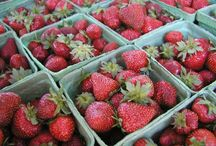 Everything Strawberries