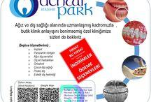 Ağız ve Diş Sağlığı / Ağız ve Diş Sağlığı Rehberi