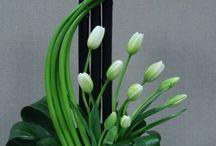 diseños floralea