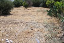 Code No.7476 A residential plot for sale in the Kato Polemidia / Code No.7476 A residential plot for sale in the Kato Polemidia area in Limassol.The plot has an area of +/-261m². In the Ka5 zone with 100% build factor, 50% cover ratio and permission to build up to 3 floors.  The plot is in a quiet, nice area surrounded by nice houses, with easy access and close to all amenities.  Located near a large park and green area and only 2 km or 2 minutes to the Orfanidi roundabout and 4 km from the beach and the town center. Has title deeds. Price: €130.000