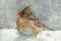 Birds/ ptáčci