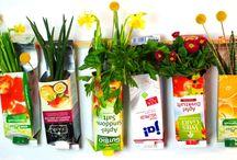 Urban Gardening & Recycling / Urban Gardening & DIY - tolle Ideen zum selber machen! #selbermachen #urbangardening