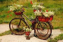 bicycle equipped with basket for flowers