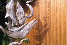 fusta animals