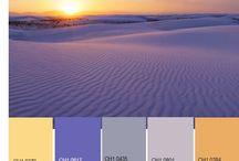 Любимые цвета