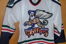 Show Your Colors / Navy blue, red, metallic silver, metallic gold / by Grand Rapids Griffins
