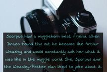 hp || headcanons / Other people's headcanons that I either like or agree with.
