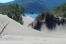 L'Argentario e la costa / Da Casetta Tartuchino, nelle giornate terse, l'Argentario si vede molto bene