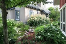 Extreme Landscaping - the latest trend. Landscaping to recreate plant communities already there..