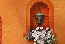 Orange / by Cindy Chumas Werner