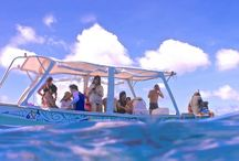 Bora Bora Public and Group Tours / This unforgettable Safari Lagoon Rays, Sharks and coral garden Snorkeling in Bora Bora, Public or Group experience  http://www.moanaadventuretours.com/bora-bora-public-tours.html