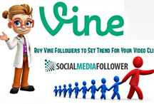 Buy Real Vine Likes / To get more media exposure in vine you must buy real vine likes. The vine likes are important to fetch traffic to your brand channel to make you popular.