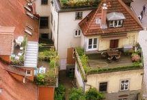 Rooftop Garden .