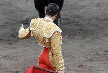 Torero Ole!!! / by Lu-C V