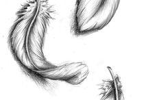 Çizginin Gücü / Karakalem