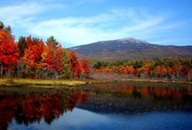 Our Beautiful Monadnock Region / Pins from around our demographic area. We live and work near Mt. Monadnock, the second most climbed mountain in the world. Our town hosts the Keene Pumpkin Festival.