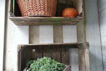 Moestuinlol / Moestuinieren, kweken, zaaien, oogsten, groenten, fruit, heerlijke snoep, overvloed, healthy food.