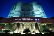 Adana airport rent a car / Adana airport rent a car,rental car,car hire