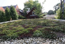Sustainable Landscapes / Green roof, Living Roof, Landscape Architecture, Landscape Design, Sustainable Landscape