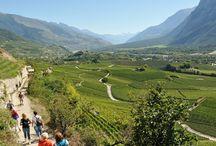 Vacay...dream trip to Switzerland / by Kaysie Stassi