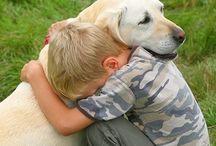 Pet Loss | Pet Grief