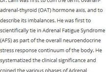 østrogen dominans
