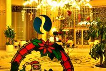 Christmas / Christmas at Paloma Hotels