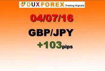 Daily Forex Profits Performance 04/07/16 - FIRST TRADE