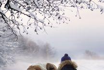 enfant shumilova avec arbre et neige