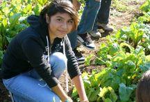Summer Programs--TVI activities/field trips / by Lauren Allen