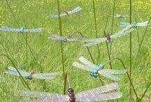 Dragonflies  <3 / by Kylira Moon