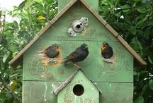 Joyful Bird Houses