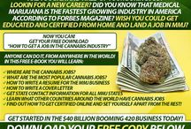 CANNABIS JOBS / GET YOUR FREE HOW TO GET A JOB IN THE CANNABIS INDUSTRY E-BOOK HERE   https://cannabistraininguniversity.com/landing-pages/how-to-get-a-job-in-the-cannabis-industry/