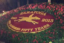 """24 Hours in Saratoga Springs / How to Spend a 24 Hour """"Daycation"""" in Saratoga Springs / by Union Gables Inn & Suites"""