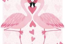 Flamingo craziness