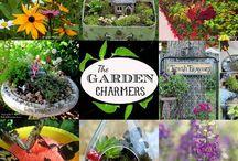 Gardening Ideas / by Melody Hoyt