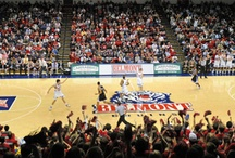 Where We Play / A peek at where the Belmont Bruins play / by Belmont Athletics