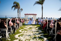 "Venues to Say ""I Do"" / Places in San Diego to get married to the one you love."