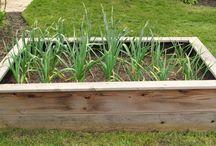 Gardening: Combined