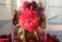 Wedding Flowers - Surrey Weddings