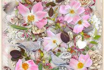 Wild Roses / Digital scrapbook kit