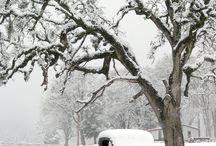 Winter-Snow-Nature