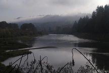 Woodland, Washington