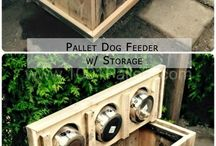 ★ DIY ★ for dogs