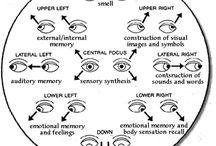 rapid eye movement / by Kathryn Ellsworth