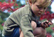 Montessori proposte