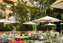 Beverly Hills Hotels / Featured hotels in my series Top Beverly Hills hotels.