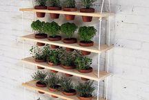 Ideas de jardinería de ana