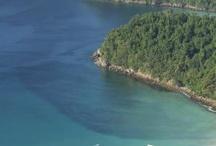 Green Path to Mergui / Huahinmatkat.fi eco-expedition to establish a Green Path: Hua Hin - Singkhon - Manoron – Yengan River - Mergui Archipelago. The final aim is to reach the Williams Reef [11˚55'N., 98˚11'E.].  http://treemandala.pallontallaajat.net/